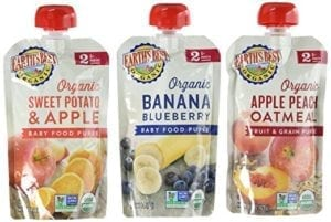 stage 2 organic baby food pouches