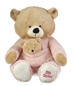 this is an image of a teddy for big sister