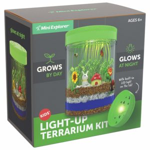 make your own glowing terranium set