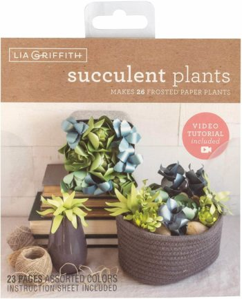 This is an image of Paper Succulent Plants