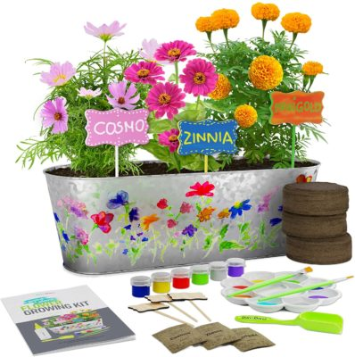 This is an image of a paint and grow craft kit for kids.