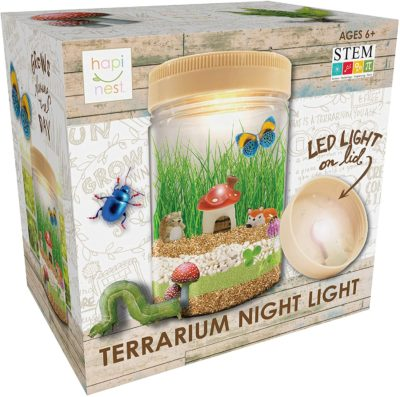 This is an image of a terrarium night light craft kit for kids.