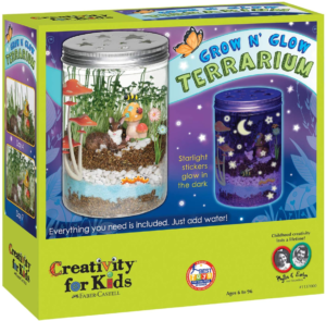 this is an image of a terrarium kit